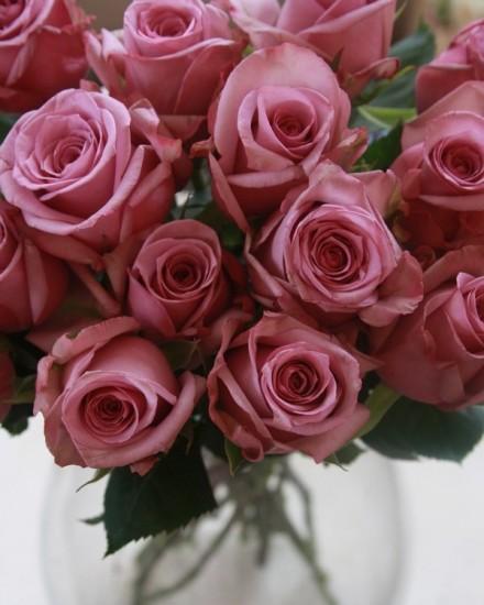 foto: Maison-des-roses.com