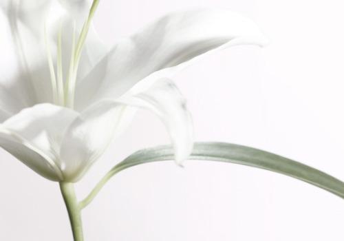 foto: Perfilprivado.com