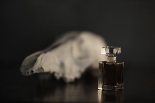 foto: gentileza de Roxana Illuminated Perfume