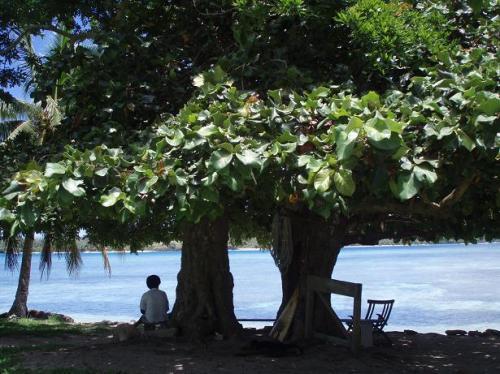 foto: Lacomunidad.elpais.com