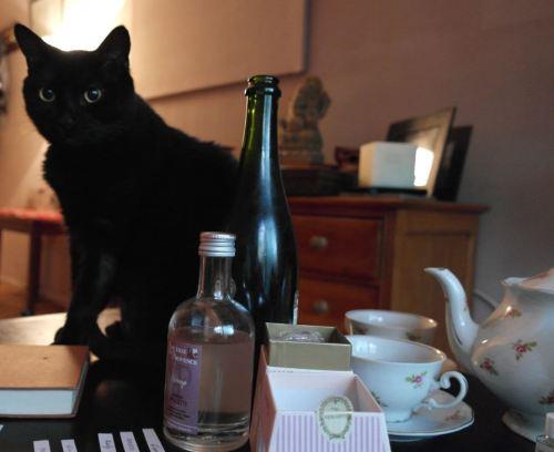 foto: Virginia Blanco Halloween también se mostró interesado en los perfumes