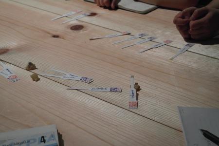 Blotters y pequeñas piezas de incienso sobre la mesa  foto: Virginia Blanco