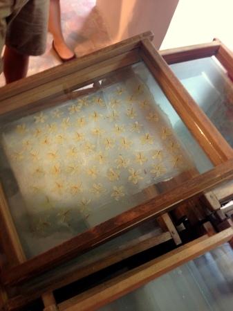 Marcos y paneles utilizados en la técnica de enfleurage (Museo Fragonard) foto: Virginia Blanco
